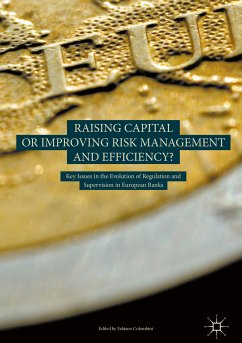 Raising Capital or Improving Risk Management and Efficiency? (eBook, PDF)
