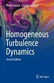Homogeneous Turbulence Dynamics (eBook, PDF)
