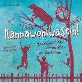 Kannawoniwasein - Manchmal fliegt einem alles um die Ohren (MP3-Download)