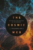 Cosmic Web (eBook, PDF)