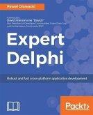 Expert Delphi (eBook, PDF)