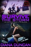 Survive the Storm (24 Hours Final Countdown Book 4) (eBook, ePUB)