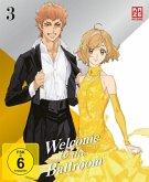 Welcome to the Ballroom - Box 3 - Ep. 13-18