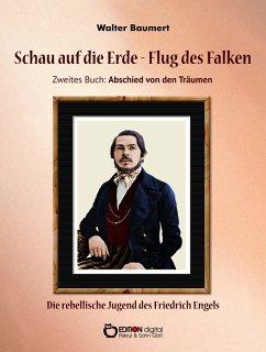 Schau auf die Erde - Der Flug des Falken. Zweites Buch: Abschied von den Träumen (eBook, PDF) - Baumert, Walter