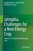 Jatropha, Challenges for a New Energy Crop (eBook, PDF)