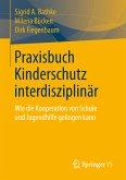 Praxisbuch Kinderschutz interdisziplinär (eBook, PDF)