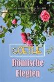 Roemische Elegien (eBook, PDF)