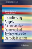 Incentivising Angels (eBook, PDF)