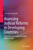 Assessing Judicial Reforms in Developing Countries (eBook, PDF)