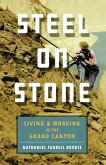 Steel on Stone (eBook, ePUB)