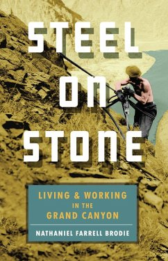 Steel on Stone (eBook, ePUB) - Brodie, Nathaniel Farrell