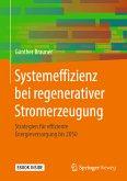 Systemeffizienz bei regenerativer Stromerzeugung (eBook, PDF)