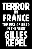Terror in France (eBook, PDF)