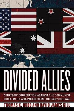 Divided Allies (eBook, ePUB)