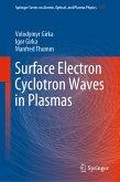 Surface Electron Cyclotron Waves in Plasmas (eBook, PDF)