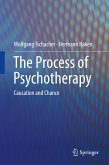 The Process of Psychotherapy (eBook, PDF)
