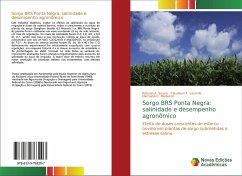 Sorgo BRS Ponta Negra: salinidade e desempenho agronômico