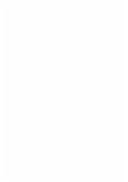 Trainingswissenschaft für die Sportpraxis