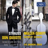 Cellosonate/Lieder/Don Quixote