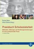 Praxisbuch Schulsozialarbeit (eBook, PDF)