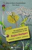 Wildkräuter und Wildfrüchte in der Region Stuttgart. Erkennen, sammeln, anwenden (eBook, ePUB)