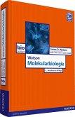 Watson Molekularbiologie (eBook, PDF)