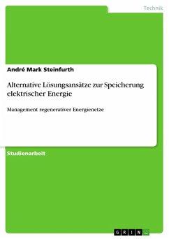 Alternative Lösungsansätze zur Speicherung elektrischer Energie (eBook, PDF)