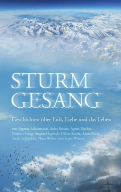 Sturmgesang (eBook, ePUB)