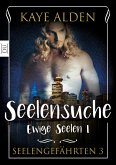 Ewige Seelen 1 - Seelensuche (eBook, ePUB)