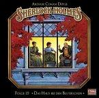 Das Haus bei den Blutbuchen / Sherlock Holmes Bd.22 (1 Audio-CD) (Mängelexemplar)