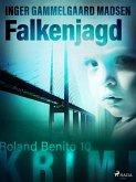 Falkenjagd - Roland Benito-Krimi 10 (eBook, ePUB)