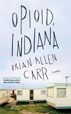 Opioid, Indiana (eBook, ePUB)