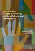 Interrogating Models of Diversity within a Multicultural Environment (eBook, PDF)