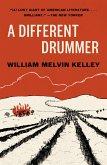 A Different Drummer (eBook, ePUB)