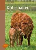 Kühe halten (eBook, ePUB)
