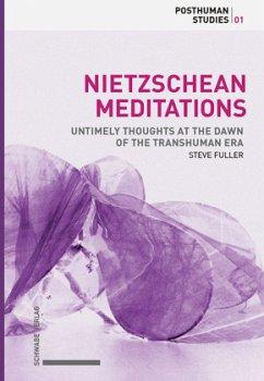 Nietzschean Meditations - Fuller, Steve