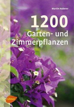1200 Garten- und Zimmerpflanzen (eBook, ePUB) - Haberer, Martin