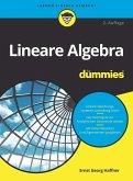 Lineare Algebra für Dummies (eBook, ePUB)