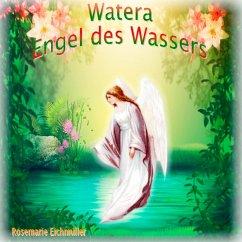 Engel des Wassers (eBook, ePUB)