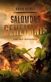 Salomons Geheimnis / Henry Voigt Abenteuer Bd.1