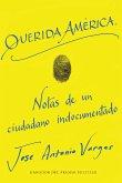Dear America \ Querida America (Spanish edition) (eBook, ePUB)