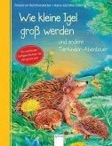 Wie kleine Igel groß werden und andere Tierkinder-Abenteuer (Mängelexemplar)