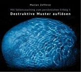 Mit Selbstcoaching zum persönlichen Erfolg - Destruktive Muster auflösen, 1 Audio-CD
