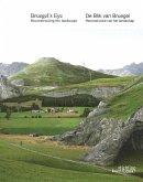 Bruegel's Eye: Reconstructing the Landscape