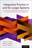 Integrative Practice in and for Larger Systems (eBook, ePUB)