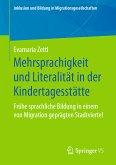 Mehrsprachigkeit und Literalität in der Kindertagesstätte (eBook, PDF)