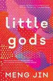Little Gods (eBook, ePUB)
