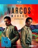 Narcos: Mexico - Staffel 1
