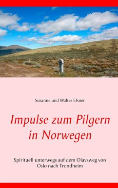 Impulse zum Pilgern in Norwegen (eBook, ePUB)