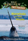 Narwhals and Other Whales (eBook, ePUB)